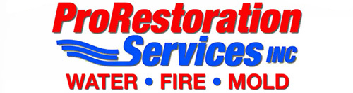 ProRestoration Services Inc