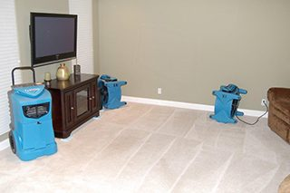 https://www.prorestorationca.com/wp-content/uploads/2016/11/carpetcleaning2-320x213.jpg