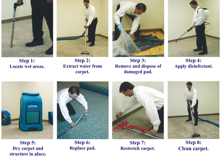 https://www.prorestorationca.com/wp-content/uploads/2016/11/carpetdrying21.jpg