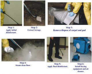 Cleaning Sewage Spill